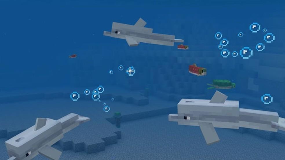 Veja passo a passo como domar Golfinho no Minecraft